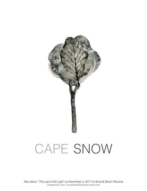 cape snow tour poster