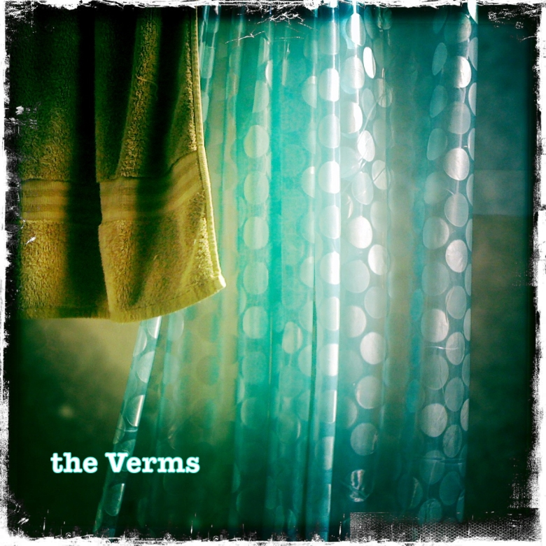 The Verms